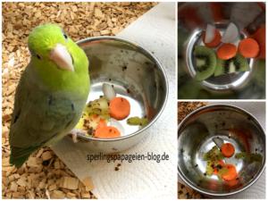 Obst- und Gemüsemix Sperlingspapagei