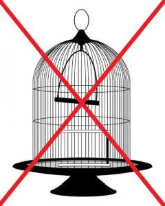 Tierschutzwidriger runder Vogelkäfig