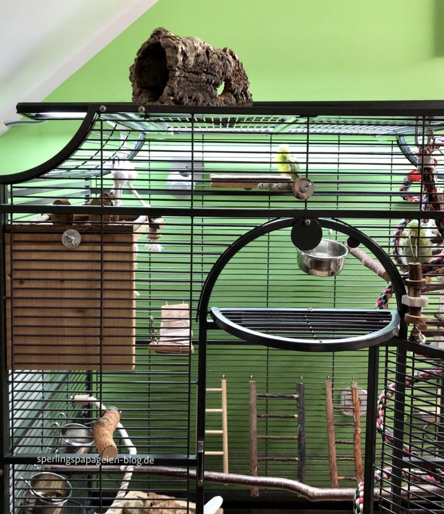 Grundbeleuchtung für Vögel